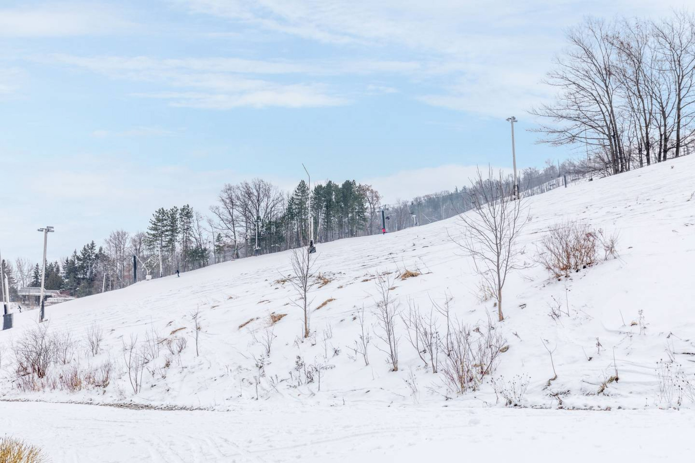 Slope-Side Blue Mountain True Ski In/Ski Out (61377)